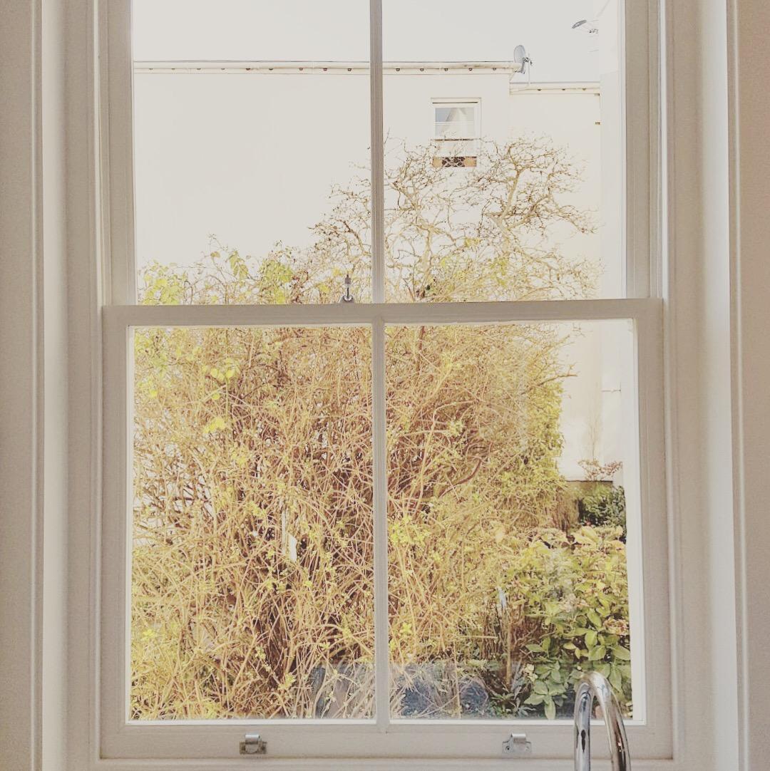 Sash window restoration Hove - rotten window 2